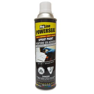 Paint Spray Middle Gray Gloss 285g (10oz)