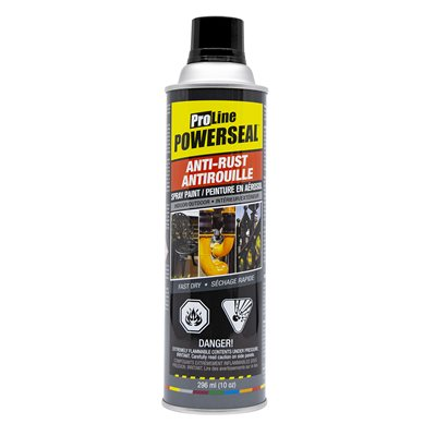 Anti-Rust Paint Spray Black Gloss 285g (10oz)