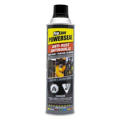 Anti-Rust Paint Spray Flat Black 285g (10oz)