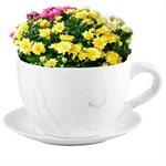 Tea Cup Planter & Saucer Carrara 10in (25.4cm)